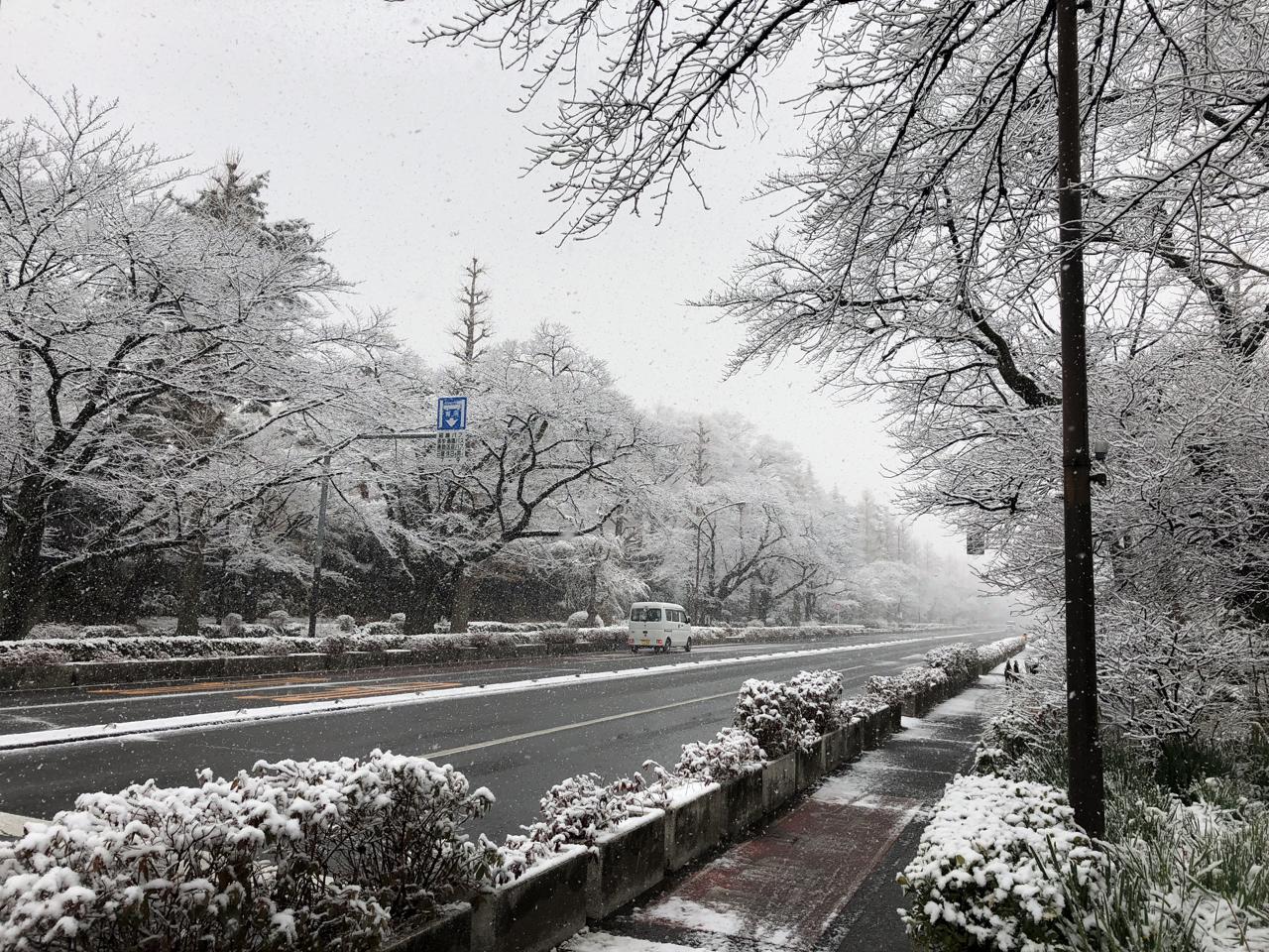 国立雪景色